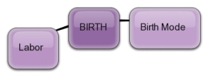 Birth is a process with two major components